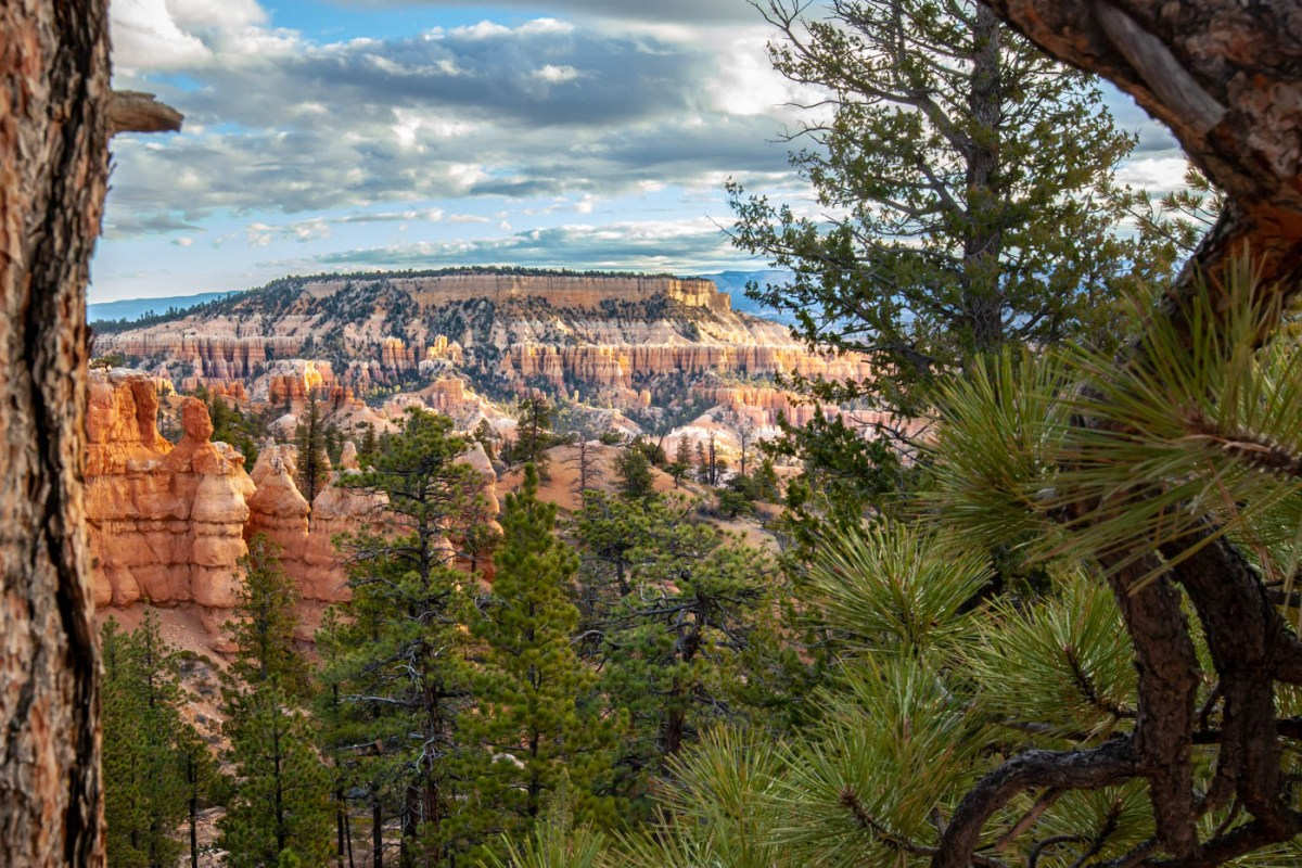 Sunrise on the Queens Garden Trail Navajo Loop Combination Hike - Best Hike at Bryce Canyon National Park #vezzaniphotography