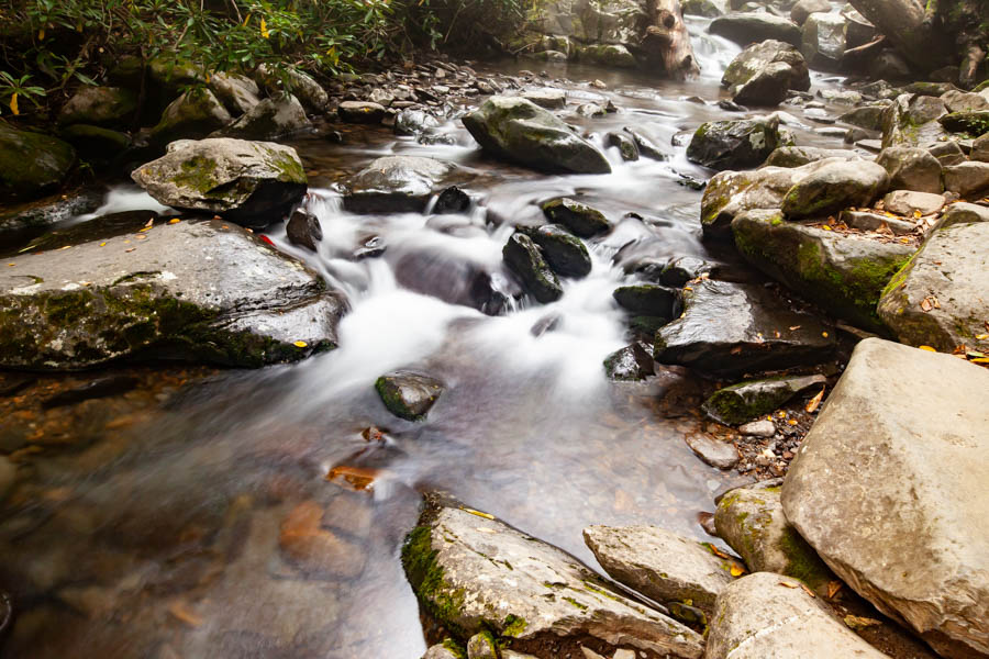 Great Smoky Mountain National Park Hike to Grotto Falls #vezzaniphotography