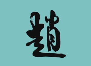 lina logo