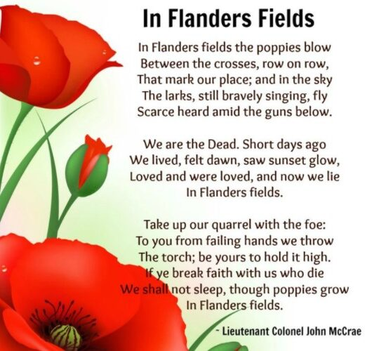 """Image shows red poppies on the left and the """"In Flanders Fields"""" poem is recited on the right."""