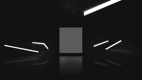 VIDEOHIVE MINIMAL BLACK AND WHITE LOGO REVEAL