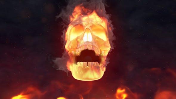 VIDEOHIVE FIRE SKULL LOGO REVEAL