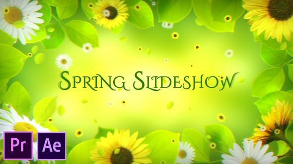 Spring Slideshow Premiere Pro