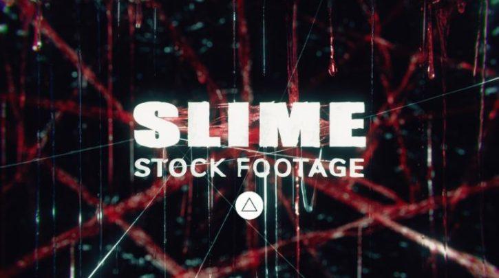 Slime Stock Assets
