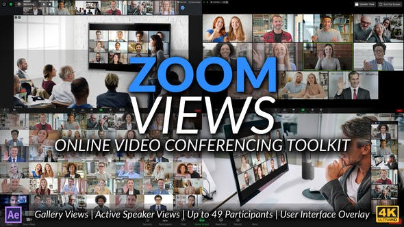 Zoom Views: Online Video Conferencing Toolkit