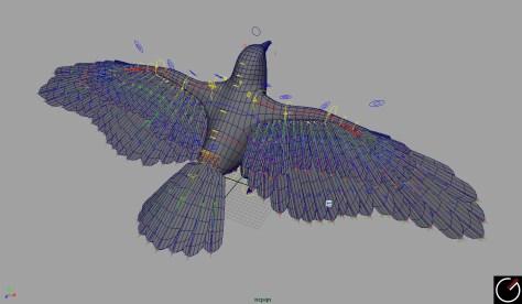 Bird_001