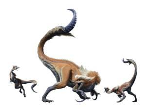 鎌鼬竜(れんゆうりゅう)オサイズチ