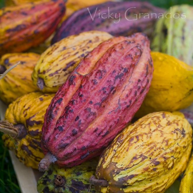 Los grandes cacaos... (2/2)