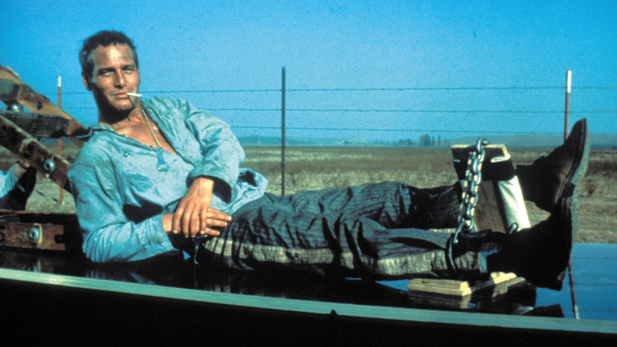 MWG: Cool Hand Luke