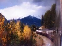 Train traveling through Canadian Rockies