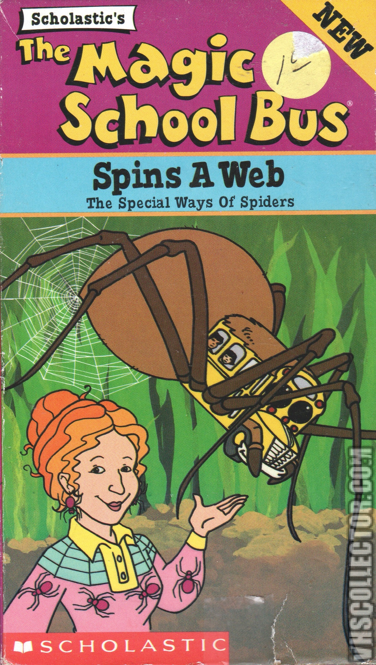 The Magic School Bus Spins A Web
