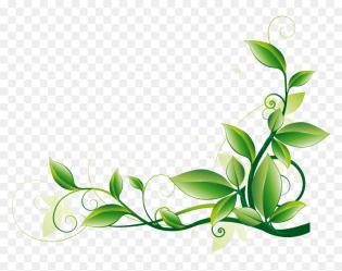Transparent Green Border Clipart Corner Leaf Border Design HD Png Download vhv