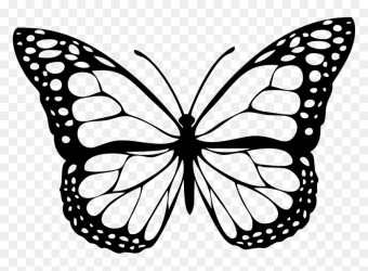 Transparent Butterfly Outline Png Black And White Butterfly Png Png Download vhv