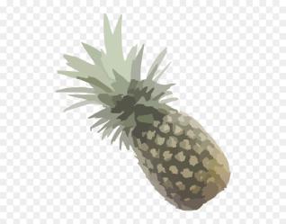 Pineapple Outline Png Transparent Png vhv