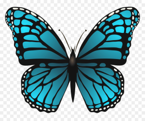 Blue Butterfly Images Clipart Free Hd Butterfly Png Blue Butterfly Clipart Transparent Background Png Download vhv