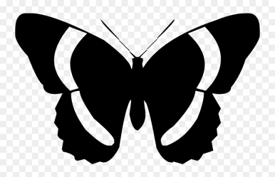 Black And White Silhouette Butterflies Clipart HD Png Download vhv
