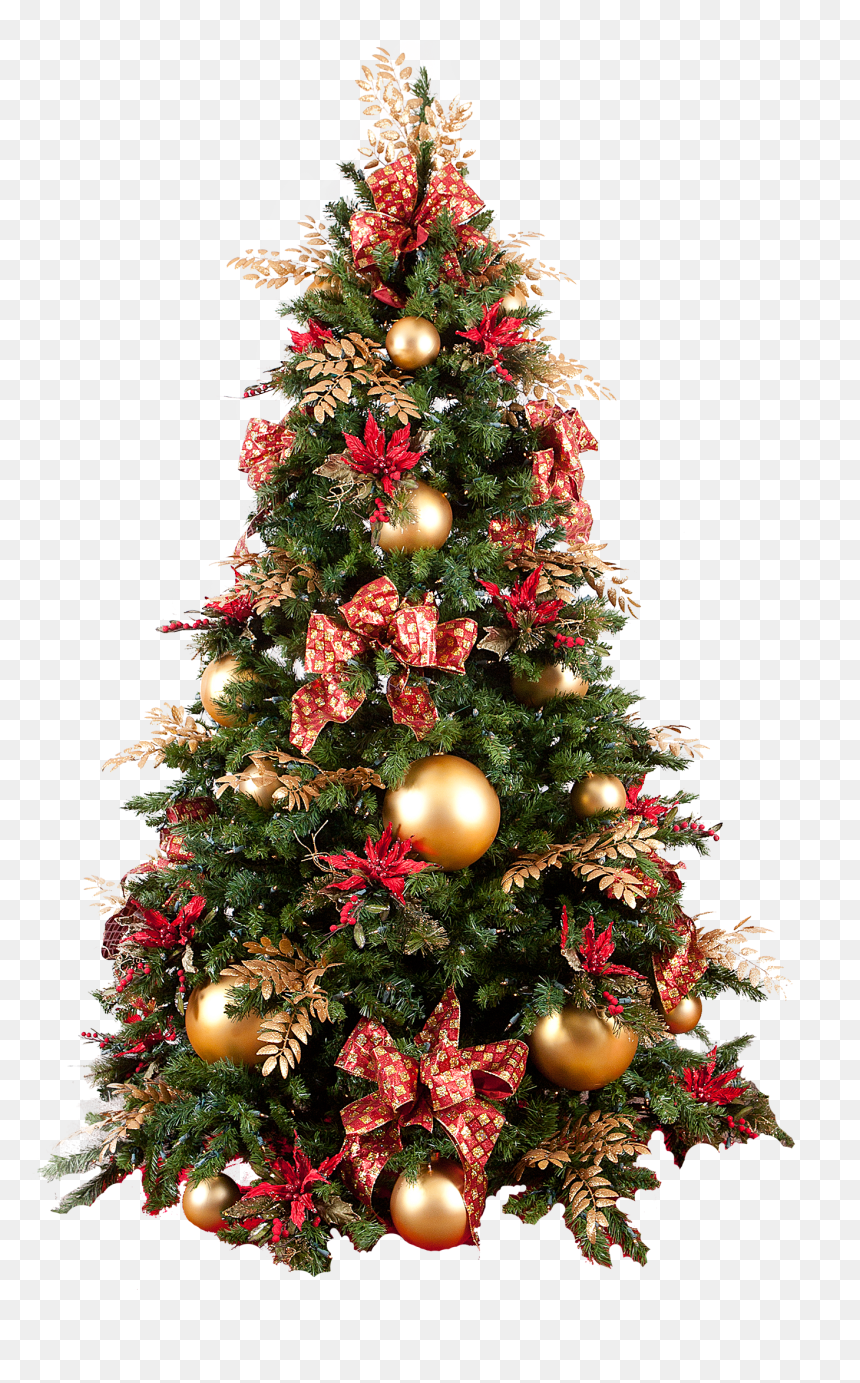 Tree Christmas Png : christmas, Christmas, Skirt,, Transparent