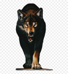 Wolf Iphone Cool Backgrounds HD Png Download vhv