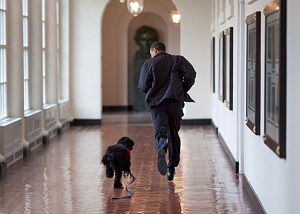 President Obama as captured by Pete Souza