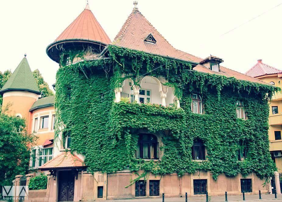 casa neoromaneasca vegetatie