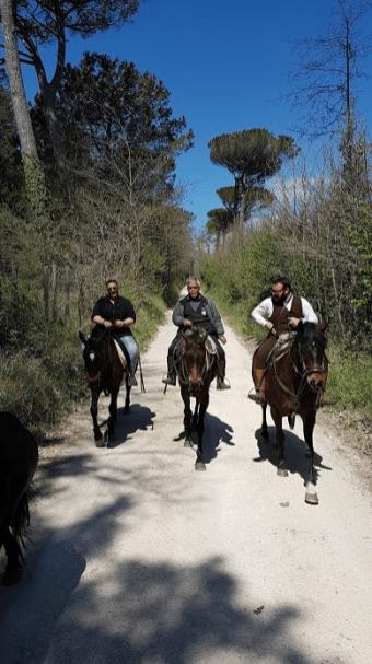 Lazio a cavallo