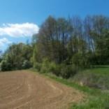 Etappe5(8 Tag)Strecke-Neudau–Fürstenfeld-11