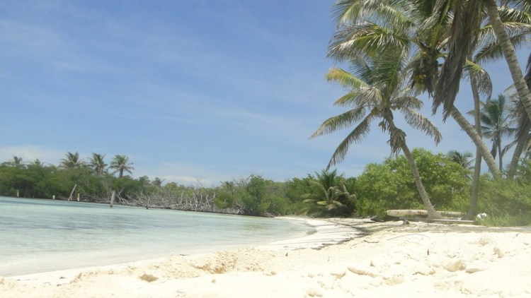 isla contoy cancun 2