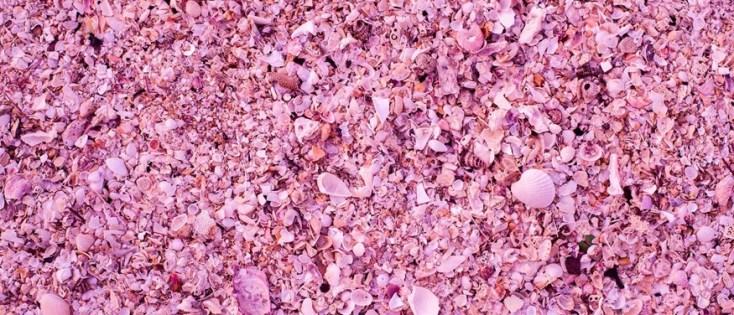 Pink Sands Beach - Harbor Island_Bahamas1