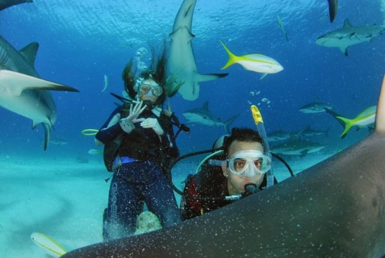 Stuarts Cove_Bahamas