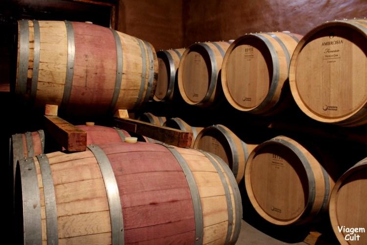 vinicola argentina