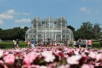 O belíssimo Jardim Botânico de Curitiba