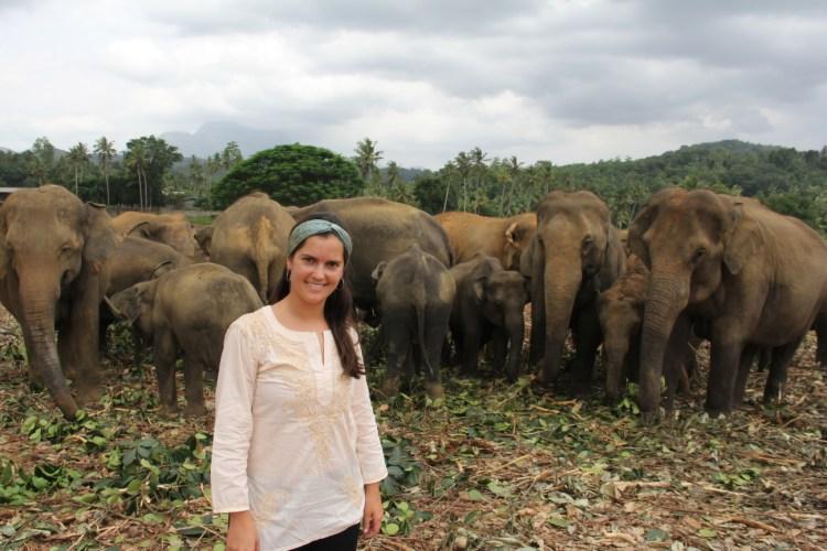 Aventuras em Pinnawalla, no Sri Lanka