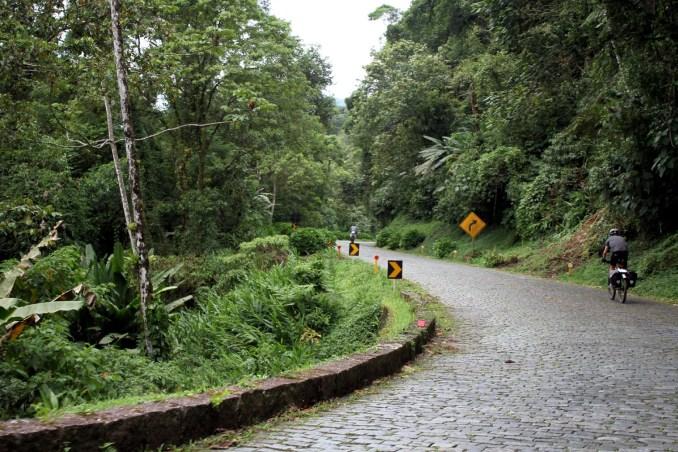 Vista da Estrada da Graciosa, no Paraná (foto: Eduardo Vessoni)