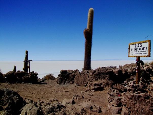 Monumento a Pachamama, na Isla del Pescado, em pleno Salar do Uyuni (foto: Eduardo Vessoni)