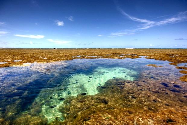PORTO DE GALINHAS: Este destino do litoral do Pernambuco ficou em 9º lugar no ranking de interesse dos estrangeiros (foto: Victor Bonomi/Flickr-Creative Commons)