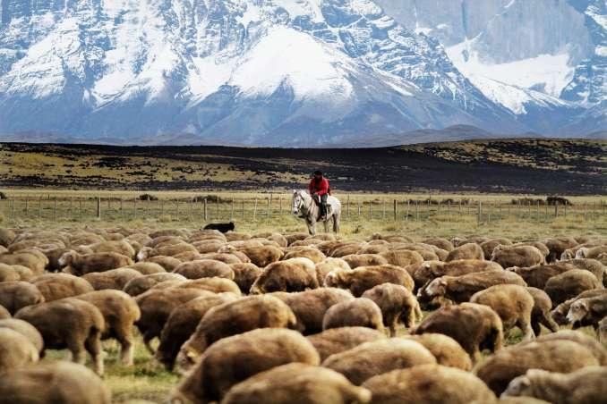 Patagônia chilena, na região de Torres del Paine (foto: Morten Andersen/Tierra Patagonia)
