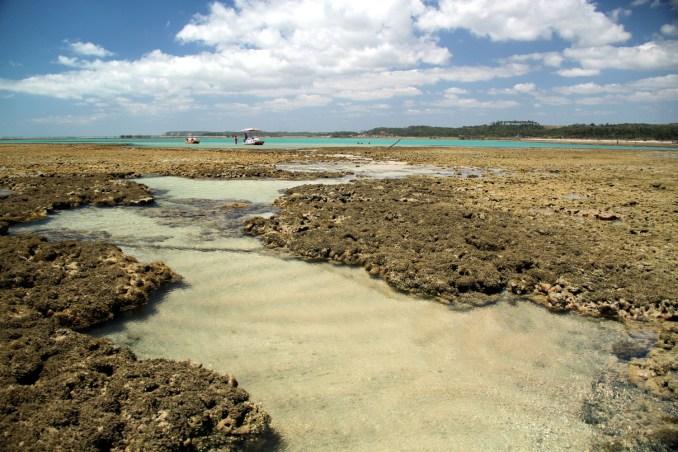 Piscinas naturais da Praia do Marceneiro, em Alagoas (foto: Eduardo Vessoni)