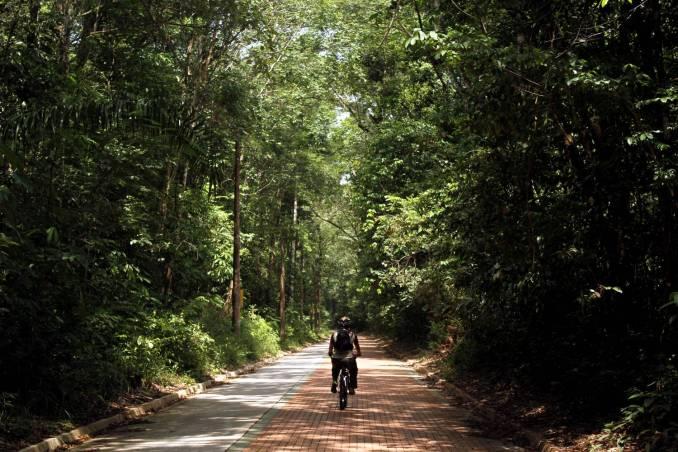 Ciclismo no Parque Estadual do Utinga, em Belém (foto: Eduardo Vessoni)