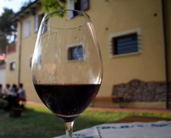 Gastronomia italiana: Vinhos típicos da Emília-Romanha
