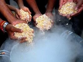 6 21puja de arroz