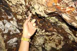 la guida ci fa notare i colori della roccia