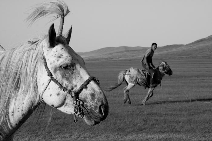 Una vita a cavallo