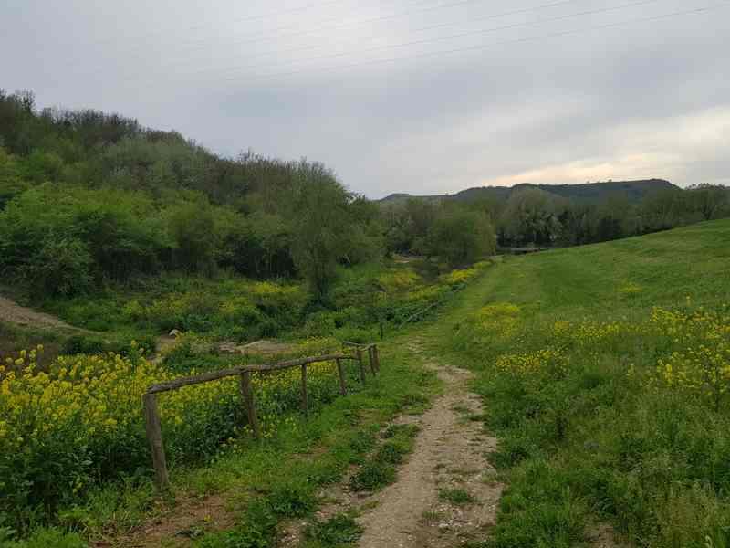 Il sentiero che scende al Tevere, fiancheggiando il rio Vittore ad Ocriculum