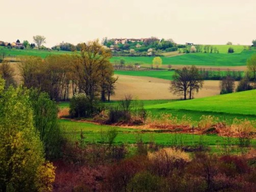 Colline del Monferrato.