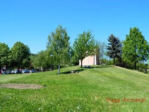Prato San Pietro delle viole, Langhe.