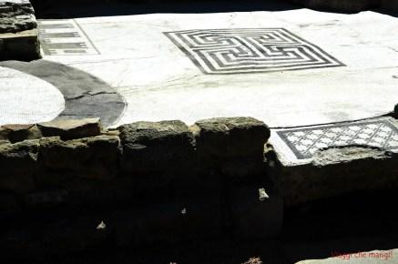 Acropoli_Populonia_mosaici