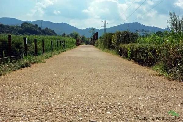 Sentiero dei Fiori di Loto a Massarosa.