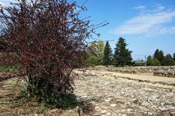 strada dell'antica libarna, città romana vicino Gavi.
