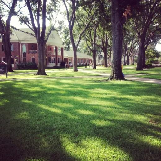 Tyler Junior College Campus a Tyler, Texas. © Valentina Corino