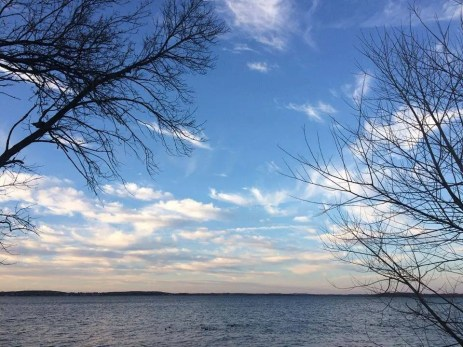 Picnic Point, Madison, Wisconsin © Giusy Clementi.